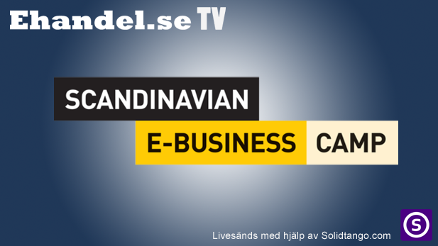 Scandinavian E-Business Camp 2013