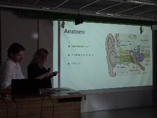 JMM Valbar fördjupning vt-19, Olika aspekter av ljud