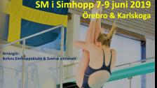 SM i simhopp Försökspass lördag 8/6 (förmiddag)