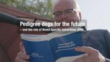 Pedigree dogs for the future – and the role of Breed Specific Intructions (BSI)