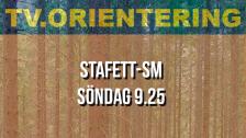 Stafett-SM - Repris