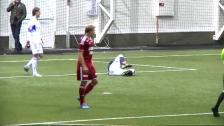 Sammandrag: Rosenborg-Djurgården